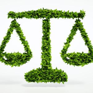 @Eco scales sign - fotolia.com